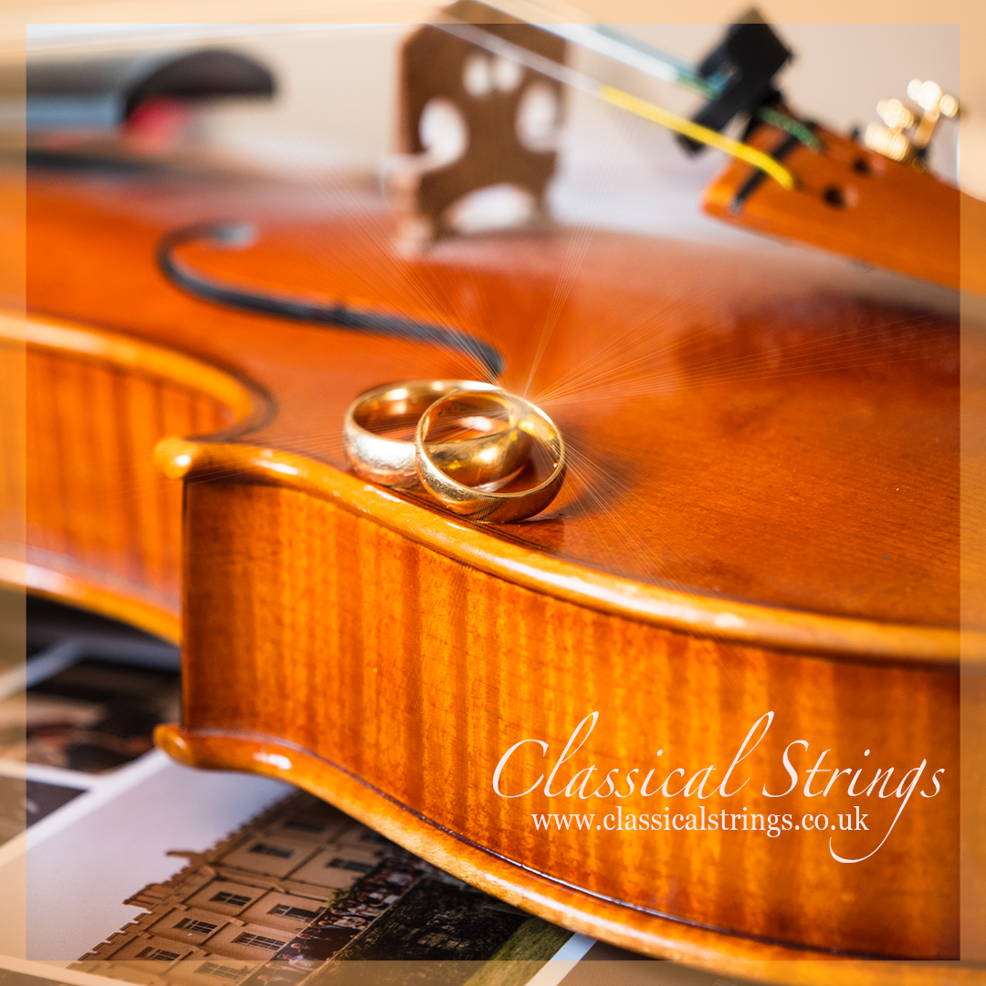 Micro Weddings Cornwall - Music ideas- violin wedding rings